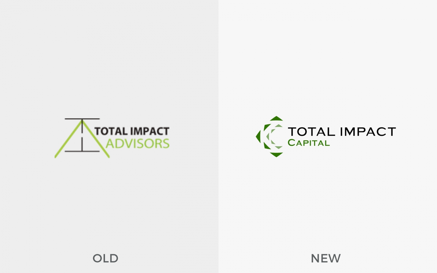 Total Impact Capital Branding Project by Crevisio