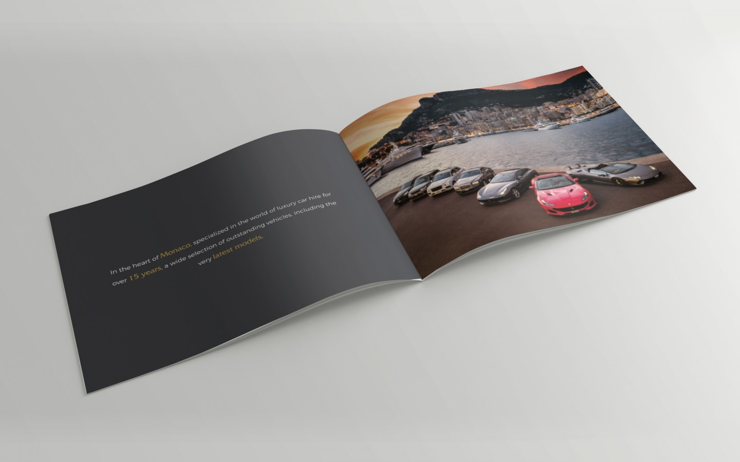 Monte Carlo Sports Car Branding Project by Crevisio