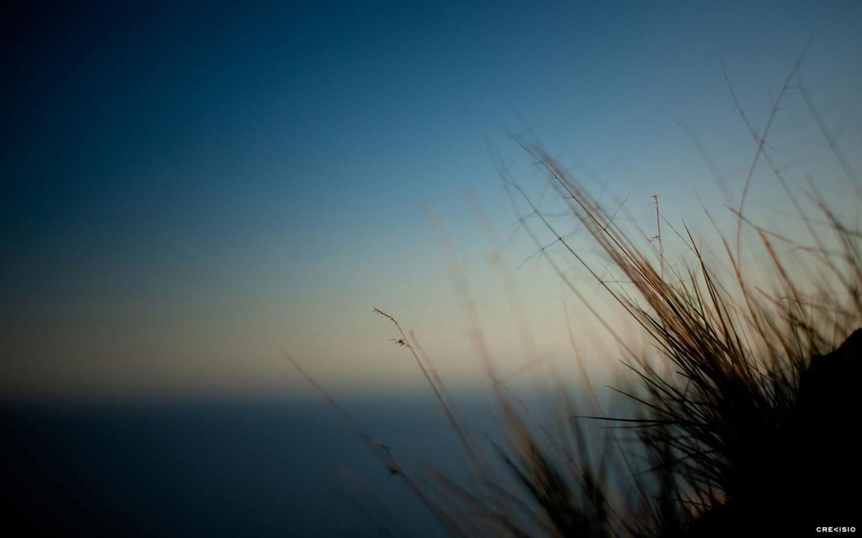 No Wind by Crevisio